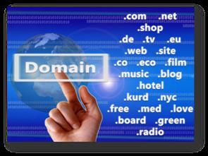 Domainabfrage